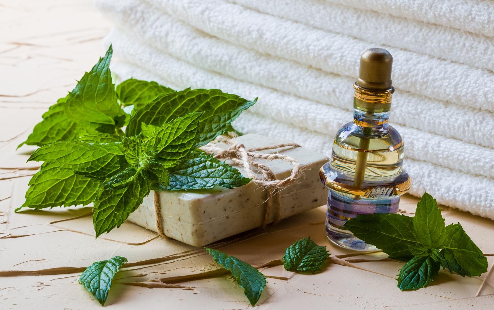 Shampooings végétaux –  l'efficacité des soins capillaires naturels